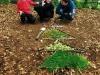 Activité land art pour découvrir autrement la nature !