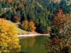 La randonnée dans les Vosges en automne !