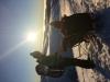 balade-randonnee-fauteuil-ski-vosges-refuge-du-sotre (17)