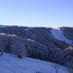 Chaume du Haut-Chitelet - Forêt givrée du Chitelet