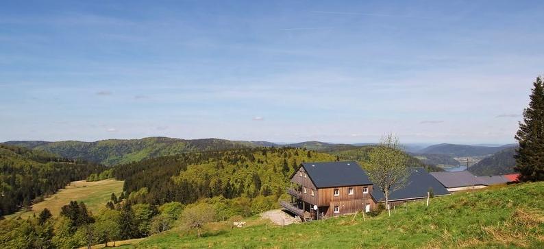 Au cœur du Parc Naturel Régional des Ballons des Vosges, entre Lorraine et Alsace à 1 200 mètres d'altitude, l'équipe du refuge vous accueille !
