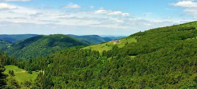 paysages-montagne-vosges-lorraine-refuge-du-sotre-je-vois-la-vie-en-vosges (222)