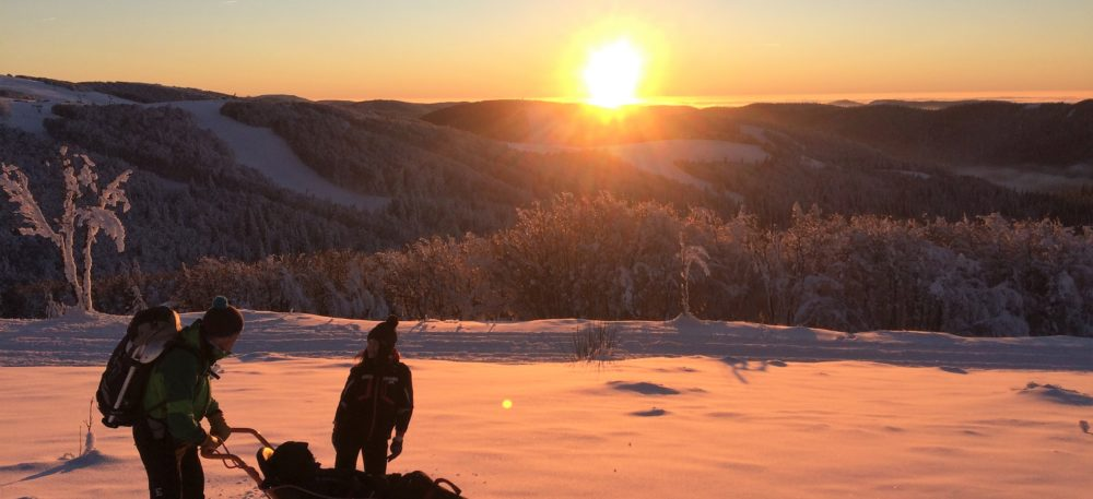 Les personnes en situation de handicap ont la possibilité de partir à la découverte du massif des Vosges en fauteuil ski.