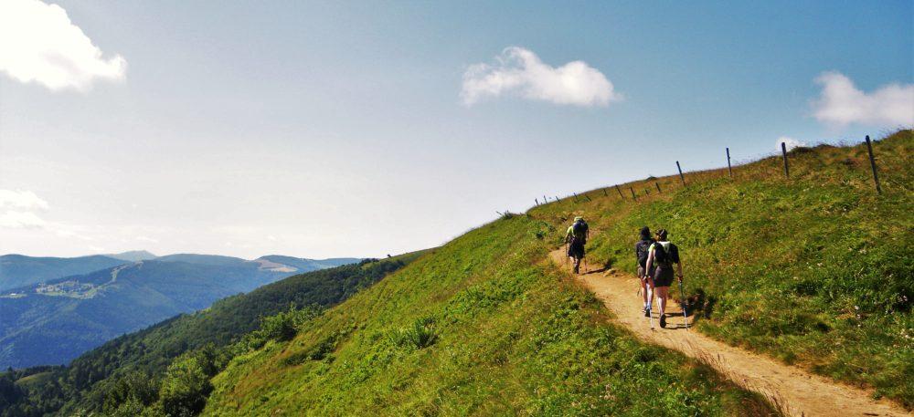Les accompagnateurs en montagne du Refuge du Sotré sauront vous emmener à la découverte des sites magnifiques des Hautes-Vosges.