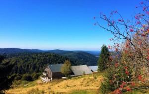 Vacances dans les Vosges au Refuge du Sotré !